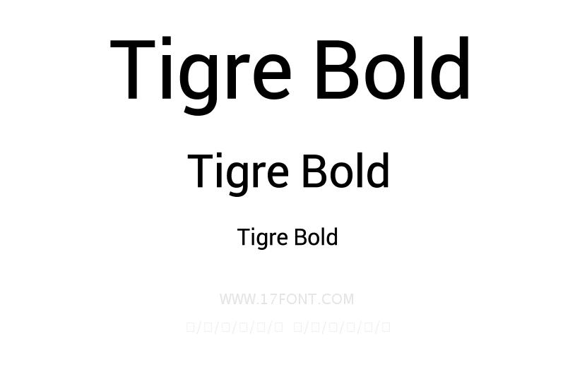 Tigre Bold